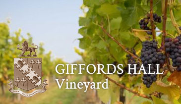 Giffords Hall Vineyard