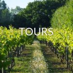 group-vineyard-tours