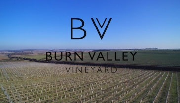 Burn Valley Vineyard